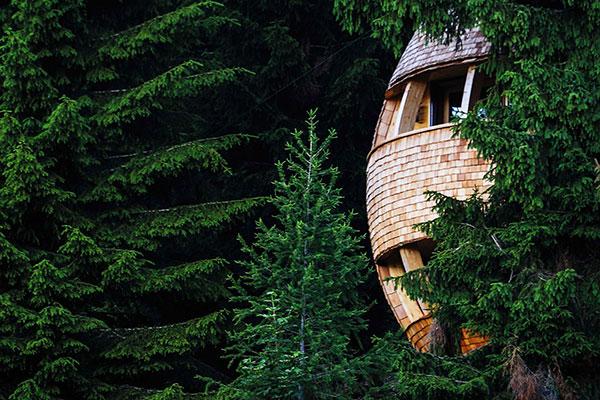 Le più belle case sull'albero per famiglie in Italia